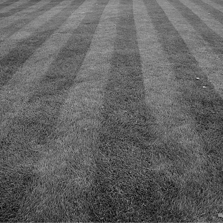 Gresham lawn care